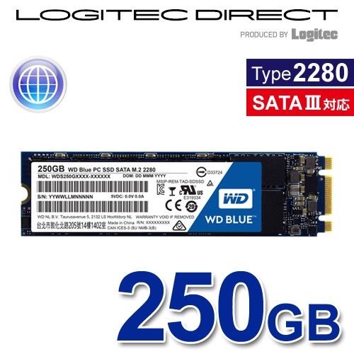 Western Digital M.2 2280SSD WD Blue 250GB バルクSSD【WDS250G1B0B-LOG】
